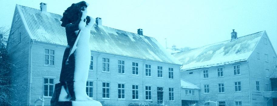 Slider-Mandal-i-snø