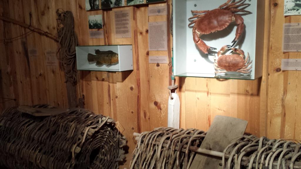 Krabbe, fiskeriutstilling