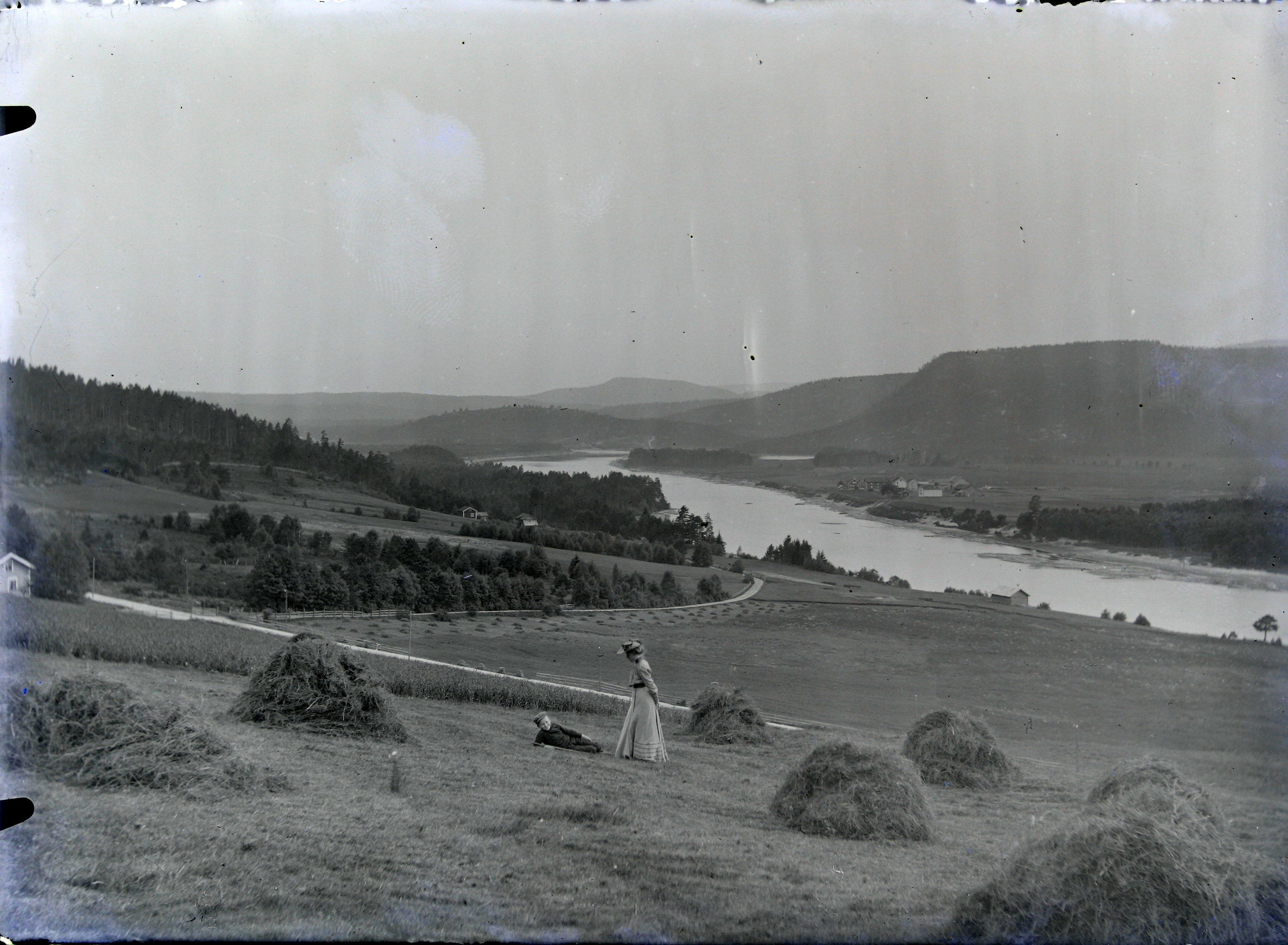 Udsyn fra Rislandsjordene til Gaarden Engenes paa Vestsiden af Nidelven.