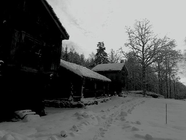 Bilde til Vandring i julemørket